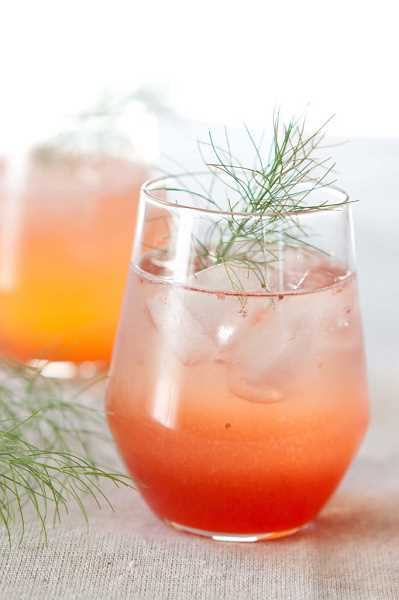 by:  SUBMITTED PHOTO - Drinking vinegars and shrubs will be popular alternatives to soda, ice tea and lemonade this summer. They are easy to make and refreshing.