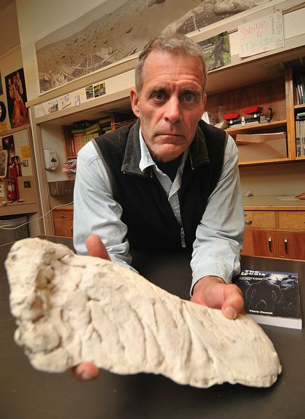 by: CONNECTION PHOTO: VERN UYETAKE - Eighth-grade science teacher Thom Powell with a plaster track cast of the Sasquatch in his classroom at Robert Gray Middle School.