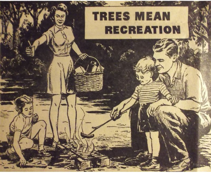 by: ARCHIVE PHOTO - Sandy Area lumber businesses ran this ad to promote their product and support the forests.