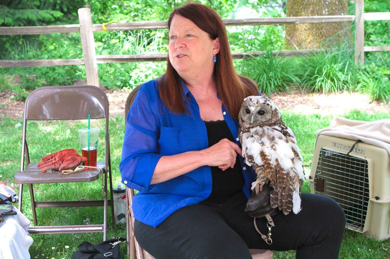 by: DAVID F. ASHTON - Portland Audubon Society volunteer Annie Barklis, from the Wildlife Care Center, introduces visitors to Hazel, a northern spotted owl.