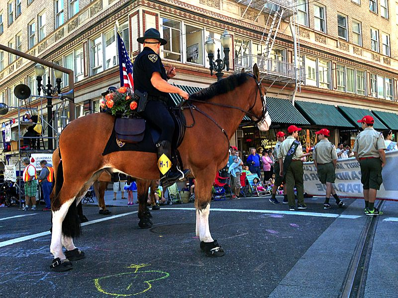 by: COURTESY OF ANDREW AEBI - Portland's Mounted Patrol Unit was part of Saturday's Grand Floral Parade, in this photo by Andrew Aebi at Southwest 10th Avenue and Stark Street.