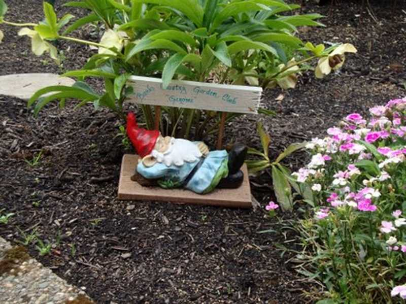 by: COURTESY PHOTO: DEBRA MOTT - You dont have to be a Master Gardener or have a big garden to join and feel welcome at our club, said Debra Mott, who loves the smell of flowers in bloom. Mott placed Gerome, the clubs traveling gnome, in her flower bed.