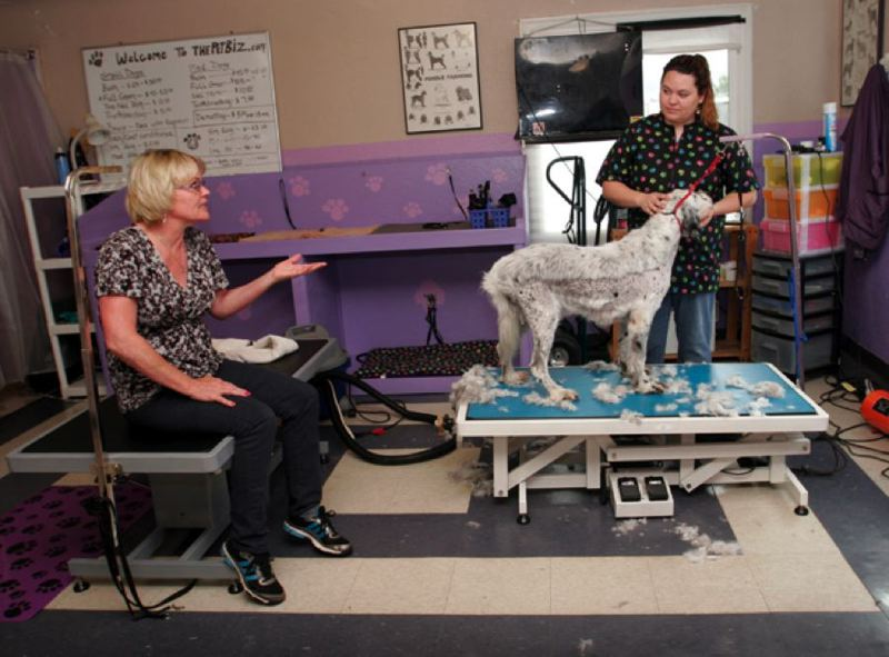 by: POST PHOTO: JIM CLARK - Kelly Carroll, left, owner of The Pet Biz in Boring, sits on a dog-grooming table because she cant stand very long, while her groomer, Hannah Lamvik, gives a client's English spaniel a haircut in preparation for a warm summer.