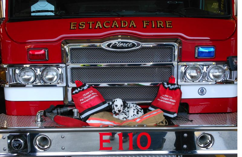 by: CHRIS NELSON - Chris Nelson used her savings to purchase pet oxygen mask kits for three of the Estacada fire districts vehicles. Volunteer fire engineer Joe Schwab's puppy, Firedog Jake, sleeps between two kits.
