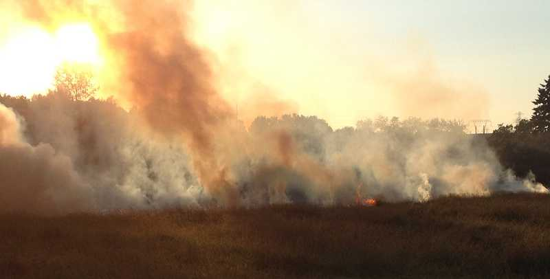 by: TVF&R - A fire that was begun by illegal fireworks burned this Sherwood field near Oregon Street Saturday evening. More than 40 firefigthers contained the blaze before it had a chance to reach nearby homes.