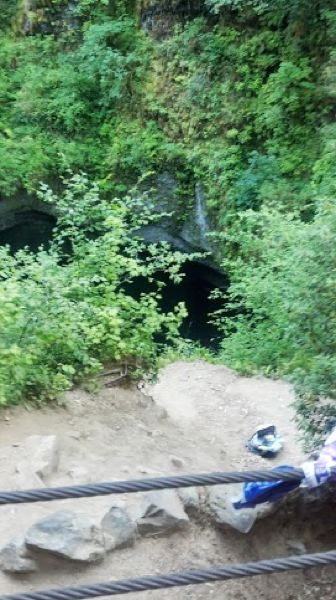 by: COURTESY OF OREGON HUMANE SOCIETY - A photo shows the site where the 1-year-old dog named Max apparently fell above Punchbowl Falls on the Eagle Creek Trail in the Columbia River Gorge.