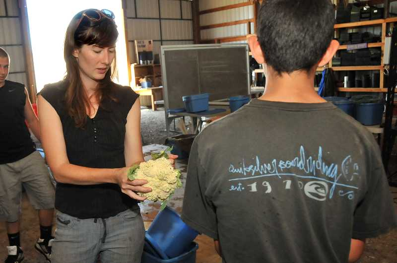 by: PAMPLIN MEDIA GROUP: VERN UYETAKE - Farm educator Holly Markham works with Chaz Hilweh, an eighth-grade intern, to prepare CSA shares at the CREST farm on July 11.