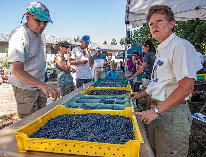 by:  JOSH KULLA - Vendors offered local blueberries and other produce and products at last Wednesdays open house.