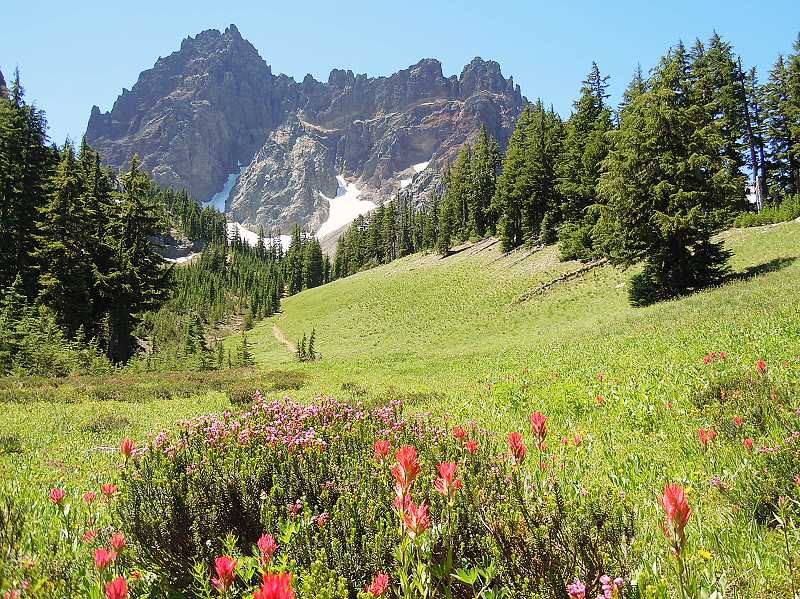 by: PHOTO BY SCOTT STAATS - The Canyon Creek Meadows hike produces some of the most picturesque views of Three Fingered Jack in the Cascade Mountains, and has some great wildflowers and streams. The trail is also a loop trail, which is hard to come by these days.