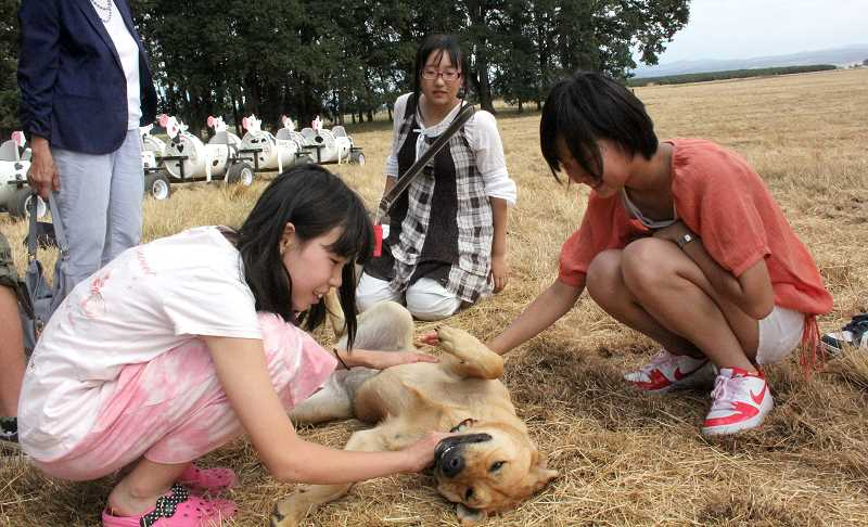 by: LINDSAY KEEFER - Students from Gosen, Japan, play with pet dog Zoe during a visit to Wooden Shoe Tulip Farm in Woodburn last week.