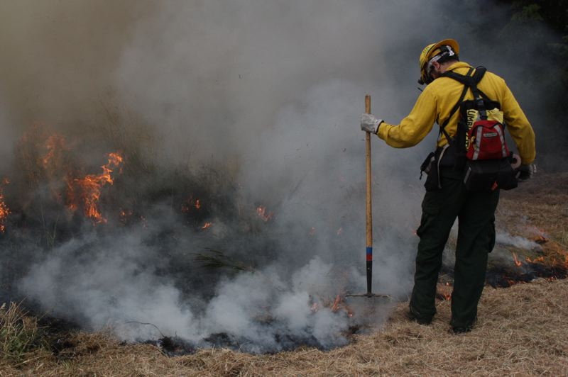 by: SPOTLIGHT PHOTO:ROBIN JOHNSON - Eric Redding of the Oregon Department of Forestry stamps out the flames at the edge of a controlled burn off JP West Road Saturday, Aug. 10