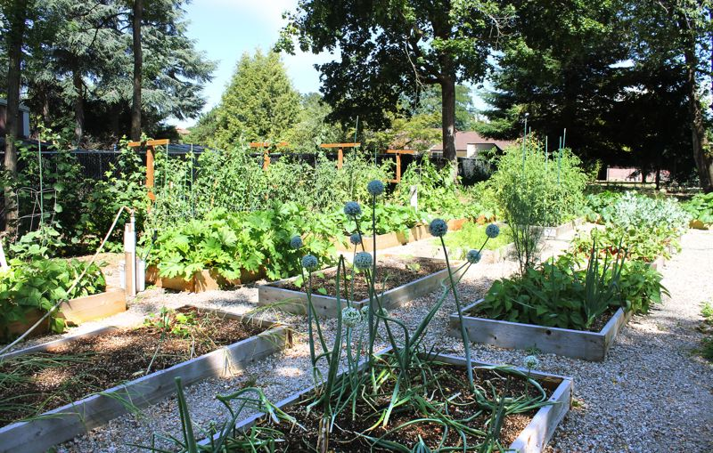 by: OUTLOOK PHOTO: CARI HACHMANN - A garden is therapeutic healing for some women at the shelter.