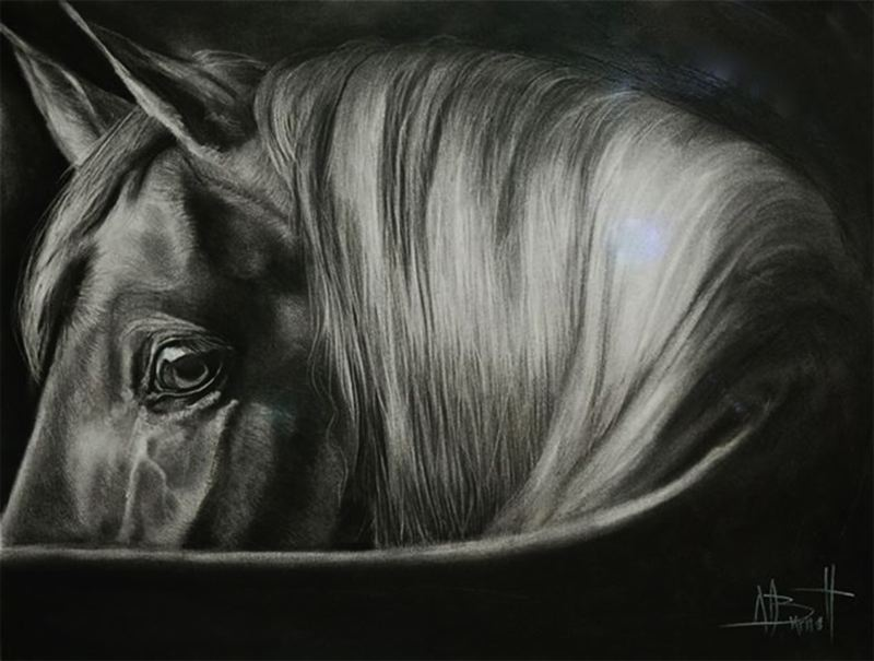 by: CONTRIBUTED PHOTO  - This is a charcoal drawing by Alison Burnett, an artist trained in Great Britain. Her image of a horse gains attention because its eye is in perfect focus.