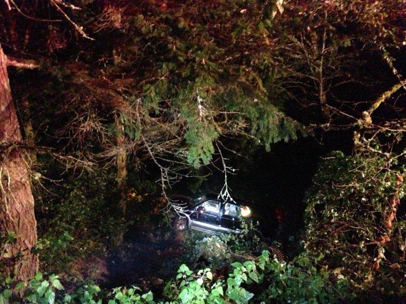 by: COURTESY: MULTNOMAH COUNTY SHERIFFS OFFICE  - Police and firefighters couldnt find this car, which drove off a road and down an embankment, until the passenger honked the horn, guiding emergency responders to its location.