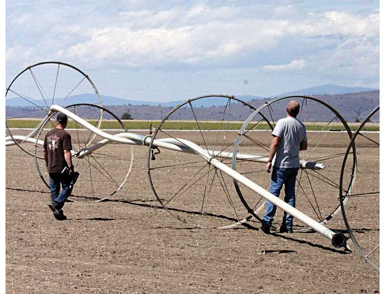 by: SUBMITTED PHOTO - Farmers Travis Ralls and Seth Klann, both of Madras, try to figure out how to separate two wheel lines on north Agency Plains that were twisted together during the storm on Aug. 25.