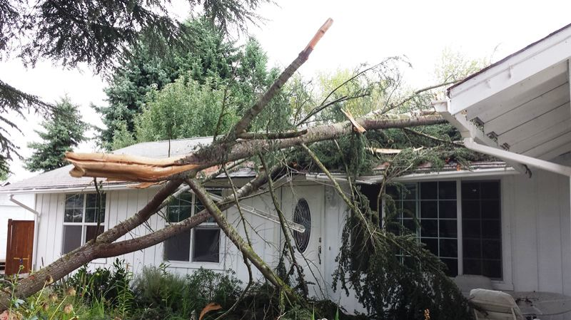 by: TUALATIN VALLEY FIRE & RESCUE - Lighting struck a tree in Aloha during a Sunday morning thunderstorm, sending parts of the tree into this and a neighboring house on Southwest Hennig Court.