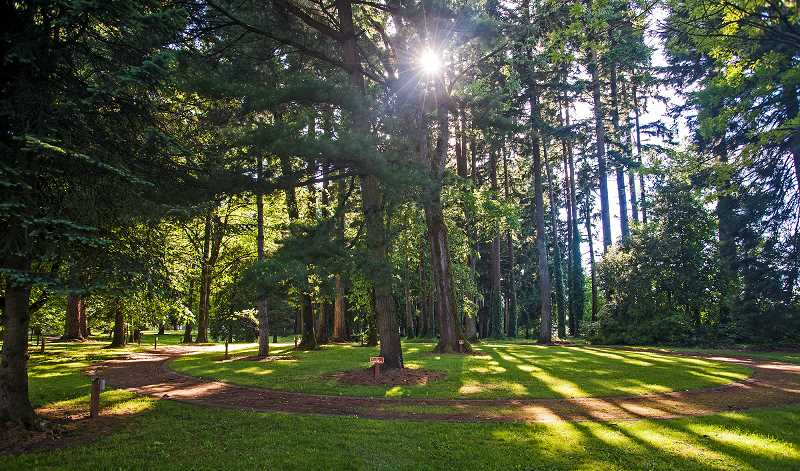 by: JOSH KULLA - The Grove of the States is an easily overlooked attraction at the French Prairie Rest Area. It features the state trees from most of the 50 states and a few overseas American territories such as Guam and Puerto Rico.
