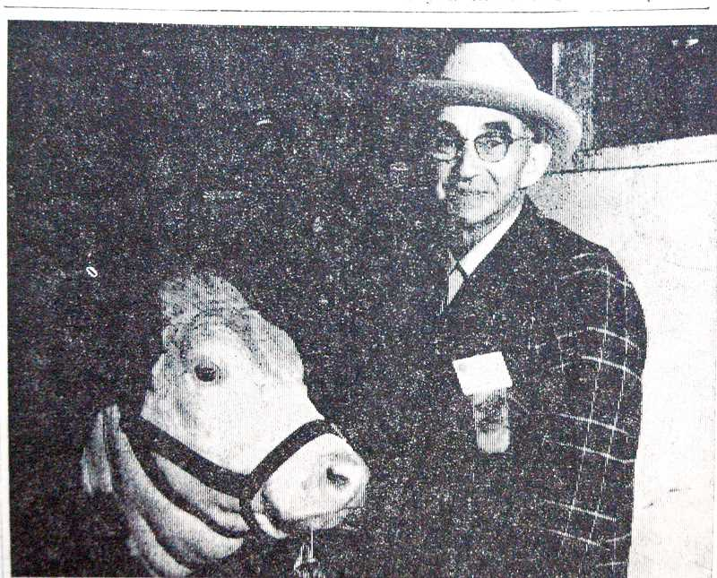 by: ESTACADA NEWS ARCHIVE PHOTO - Caption for this 1968 photo: Everett Shibley, well-known local farmer, who has shown cattle at Springwater Fair every year since it started in 1920, is seen with one of his Herefords. He will exhibit again this year.