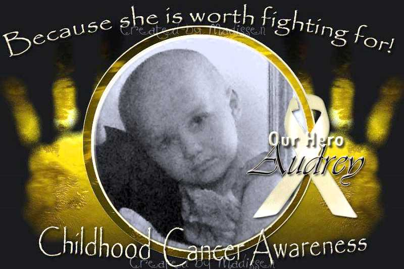 by: CONTRIBUTED - There will be a benefit concert for Audrey Hohman, a local 3-year-old with leukemia, from 8 p.m. to midnight Saturday, Sept. 28, at the Viewpoint Restaurant & Lounge, 20189 S. Springwater Road. The Country Back Roads band will get people dancing. Come enjoy the raffles, food and good company. Donations will go toward Hohmans medical bills.