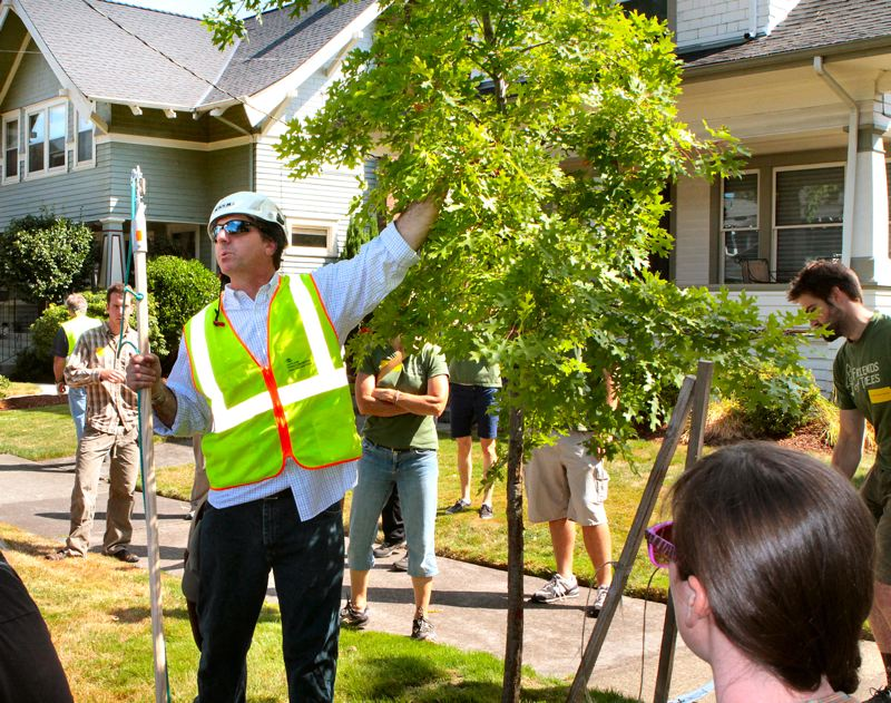 by: DAVID F. ASHTON - Portland Parks & Recreations Urban Forestry Supervisor Larry Maginnis indicates a feature of a newly-transplanted tree to the group of volunteers gathered around him.