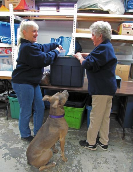 by: PHOTO BY ELLEN SPITALERI - Linda Cloud, AniMeals coordinator, and volunteer Jan Straessle pack dog food into bags, while Kady, Straessle's dog, watches.