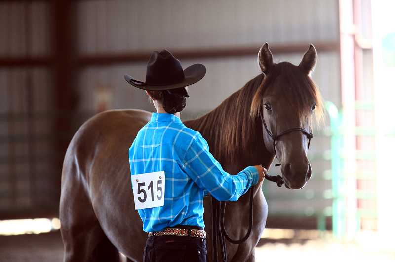 by: COURTESY PHOTO - Shelby Rosholot (pictured) and Katie Marten (not pictured) won ribbons at fairs this year with the mustangs they adopted -- and returned home from a national competition with even more prizes.