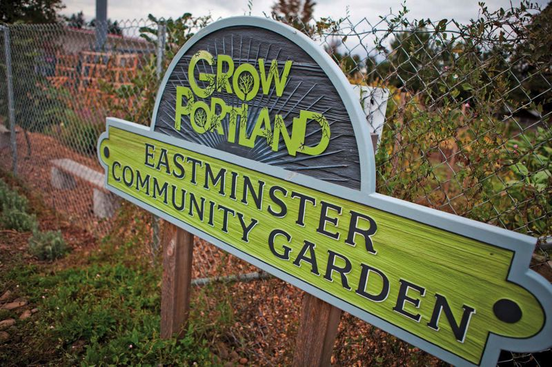 by: TRIBUNE PHOTO: ADAM WICKHAM - Grow Portlands Eastminster Community Garden has produced thousands of pounds of vegetables for local volunteers. The garden is one of several the nonprofit group is tending as part of its Outgrow Hunger program.