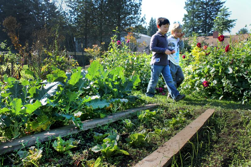 by: OUTLOOK PHOTO: CARI HACHMANN - Jack Hu and Cato Hess walk through the Franciscan Montessori Earth School garden during recess.
