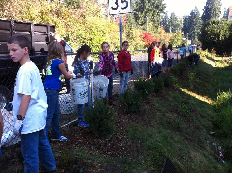 A total of 96 Hazelbrook Middle School sixth-graders participated in a volunteer project to create a rain garden to purify storm water returning to the Tualatin River on Oct. 17. (Submitted photo)