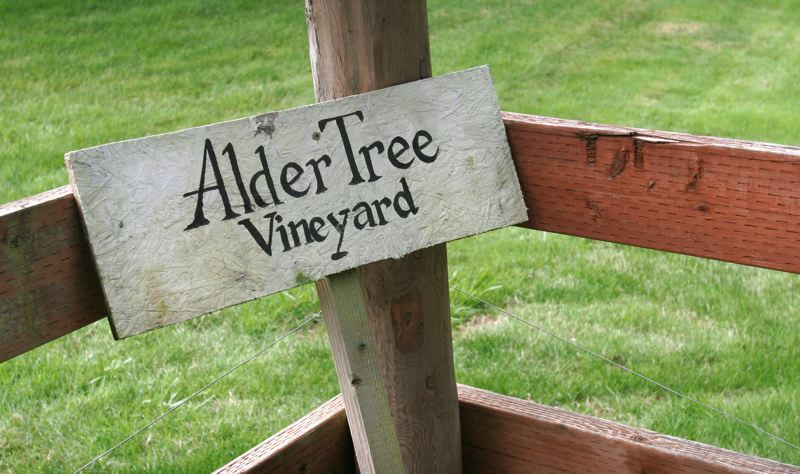 by: OUTLOOK PHOTO: JIM CLARK - The winery is named for an alder tree on the couples property, marking the entrance to the tasting room.
