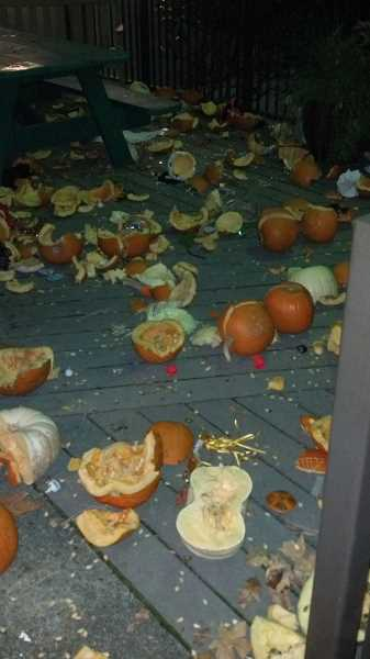 by: SUBMITTED  - Broken pumpkins litter the ground outside Three Rivers Charter School after vandals stuck overnight Oct. 28.