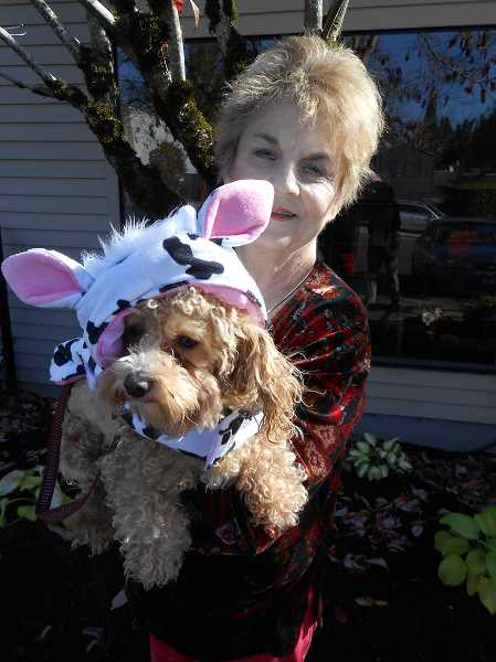 by: CLIFF NEWELL - In downtown Lake Oswego on Monday, Benji, shown here with Susan Sojourner, was eager to show off his Halloween costume: a white cow with black spots. Although he experienced some trouble getting used to the costume, he should have no trouble getting dog treats.