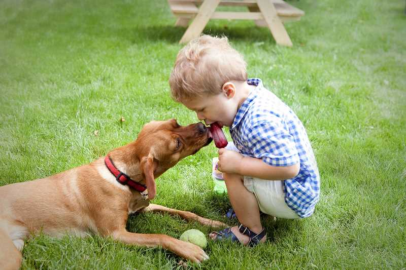 Annelie Adams' photo, entitled 'A Boy and His Dog,' took first place in the People of Lake Oswego category.