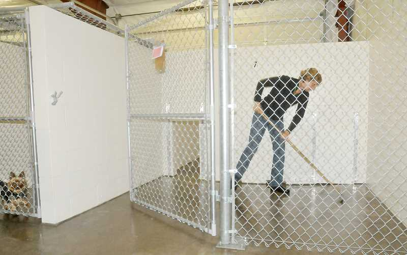 by: GARY ALLEN - Fit for fido - A volunteer cleans a canine kennel in the Newberg Animal Shelter complex on Sandoz Road last week.
