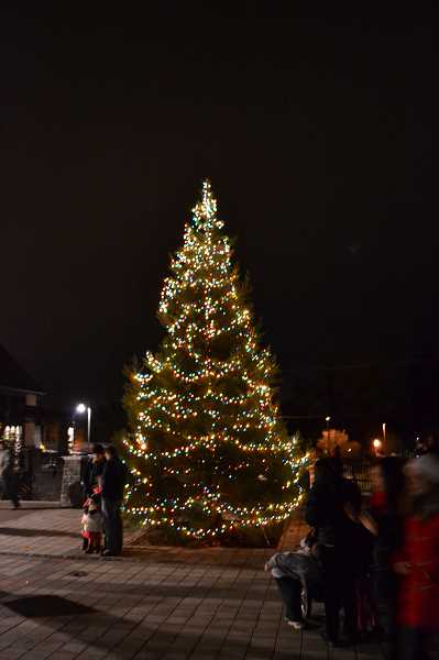 by: SUBMITTED PHOTO  - The annual tree lighting will take place Nov. 29 beginning at 5:30 p.m. The Bigelow Plaza Holiday Tree at the corner of A Avenue and Fifth Street will be lit, then a procession will head to Millennium Plaza for the lighting of the Millennium Plaza tree.
