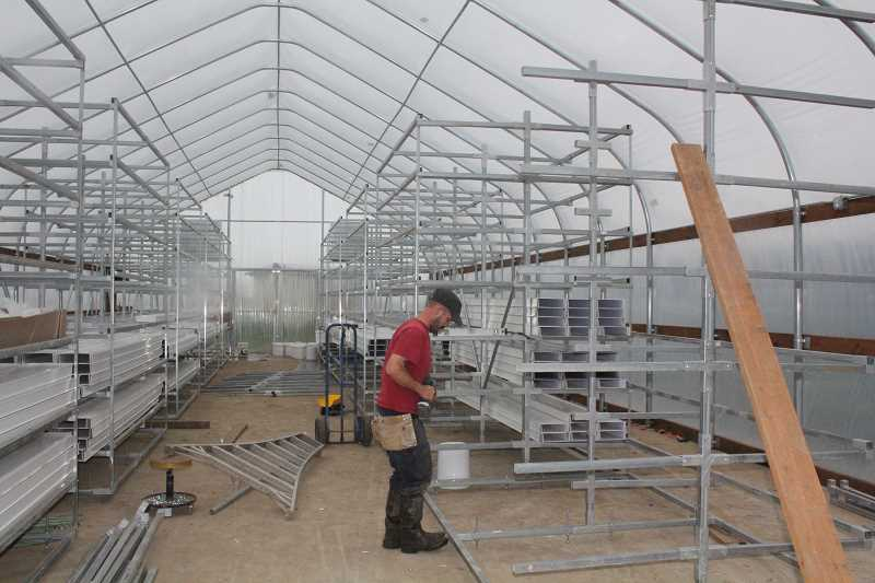 by: JEFF MCDONALD - Jack Perrin's son-in-law, Rick Sherman, helps build the greenhouse that will be used to grow grains at Perrin Farms hydroponically. The greenhouse grains will yield 80 to 90 percent of the nutritional value of the grain compared with mills, which only contain 60 percent of the value.