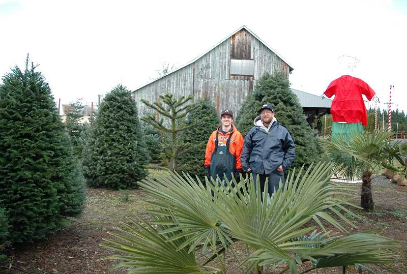 by: ISABEL GAUTSCHI - What a strange forest you have! Bob'z employees Shane Mills and Mike Snitchler stand amid firs, palms and a monkey tree.