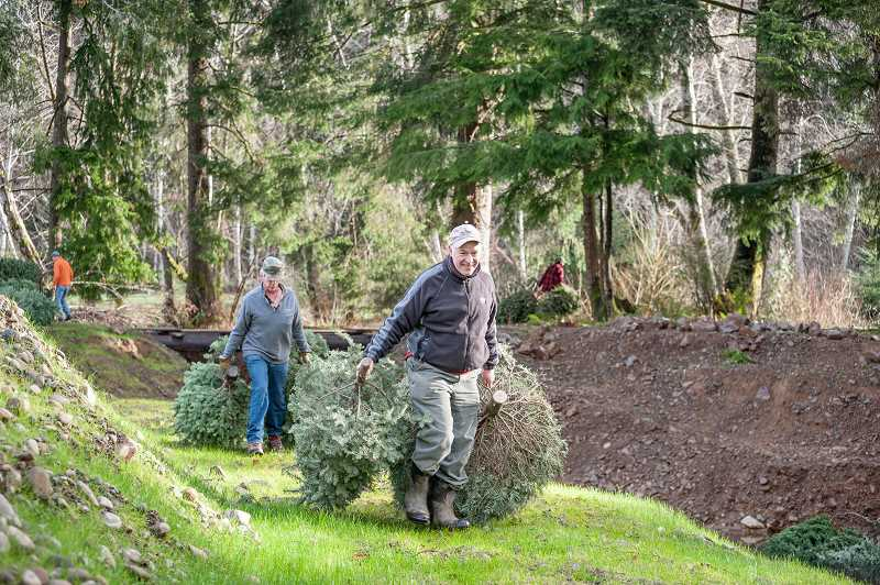 by: MICHAEL ELLIS - Michael Schoen and Doug Ray drag more trees to an off-channel wetland complex on the Oregon coast last January. Property owner Herb Thompson partnered with Trout Unlimited and others to build the complex to provide rearing habitat for coho salmon fry.