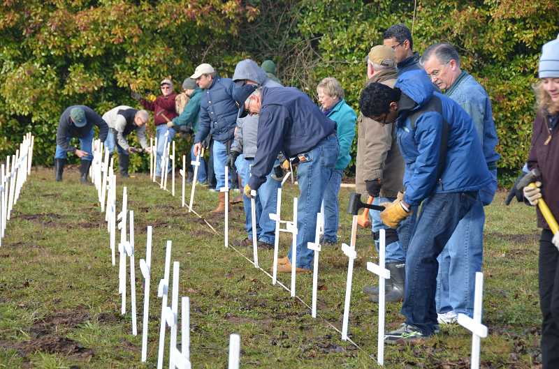 by: SUBMITTED PHOTO COURTESY OF STEVE HOLTHOUSE - Members of St. Francis Catholic Church's Knights of Columbus and the parish's Respect Life Committee install white crosses along Tualatin-Sherwood Road Saturday to call attention to the passage of Roe v Wade 40 years ago.