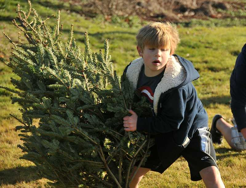 by: REVIEW PHOTO: VERN UYETAKE - Seven-year-old Jonas Procter gives it his all as he tries his hand at tree tossing.