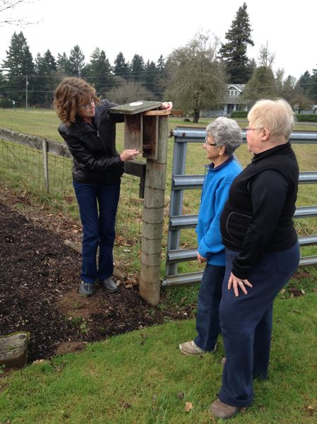 by: PHOTO BY JONATHAN HOUSE - Prescott Bluebird Recovery Project volunteer Dana Sue Robinson shows homeowner Irene Dietz how to place mealworms in a holder for her bluebird box.
