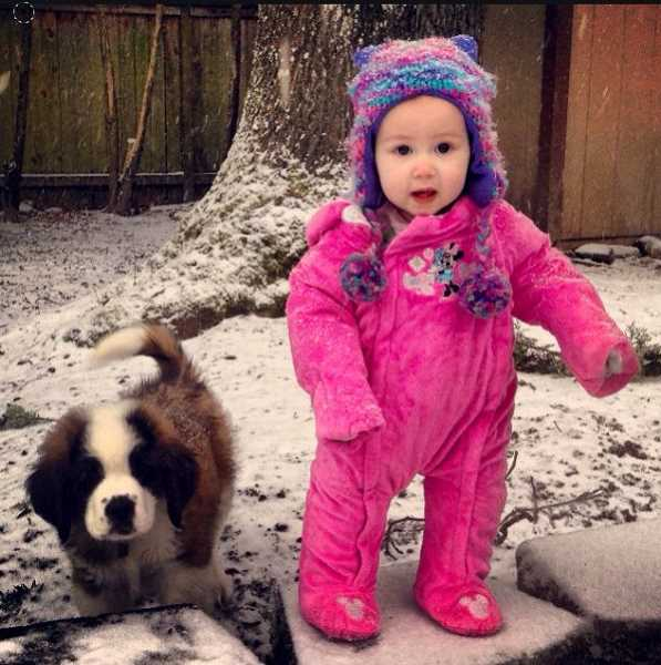 by: SUBMITTED PHOTO: BENJAMIN LOWEY - Nothing is cuter than a little girl and a St. Bernard puppy playing in the snow.