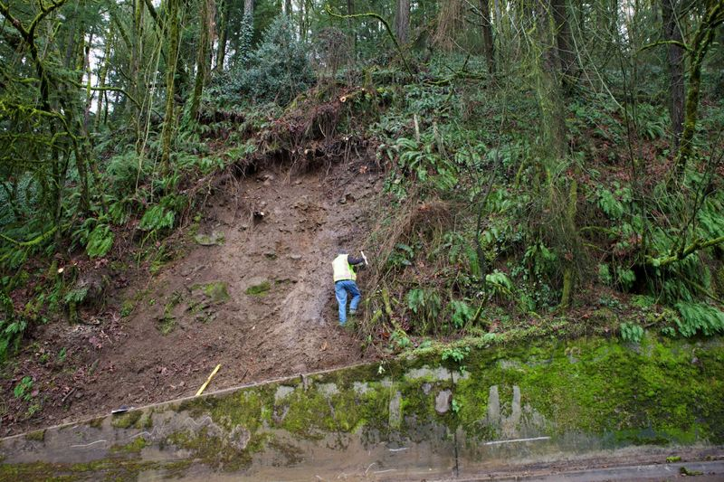 by: TRIBUNE PHOTO: JAIME VALDEZ - Portland Bureau of Transportation structural engineer David O'Longaigh checks the ground stability at Friday's landslide along Northwest Cornell Road.