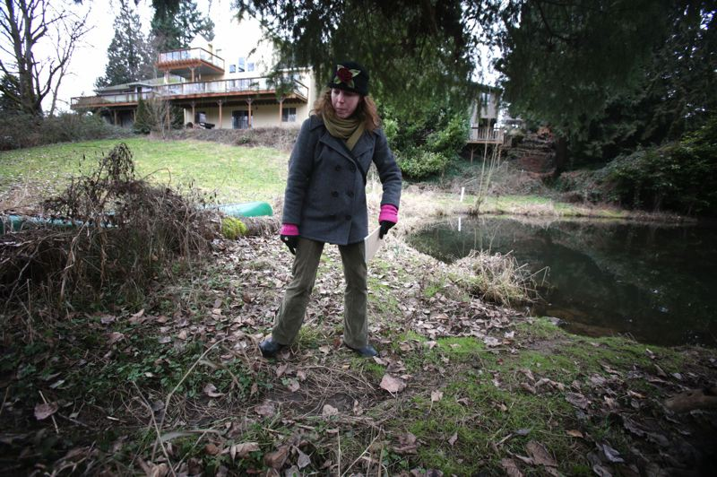 by: PHOTO BY: JON HOUSE - Tricia Sears, coordinator for the North Clackamas Urban Watershed Council, looks at a trail caused by a beaver between a newly dammed lake, and an older man-made lake.