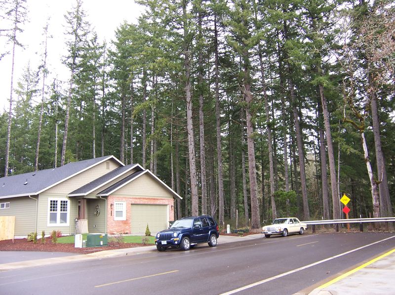 by: PHOTO COURTESY OF OREGON DEPARTMENT OF FORESTRY - During remodeling or improvement projects, an ounce of prevention goes a long ways towards maintaining healthy trees on your property.