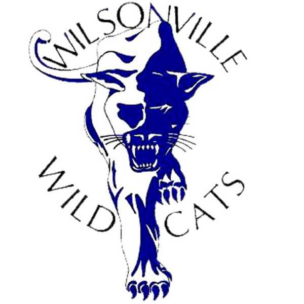 Image result for wilsonville high