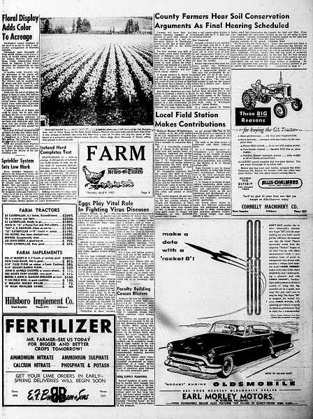 by: FILE IMAGE - In this 1953 issue of the News-Times -- then the Washington County News-Times -- the areas daffodil harvest played big on an inside page.