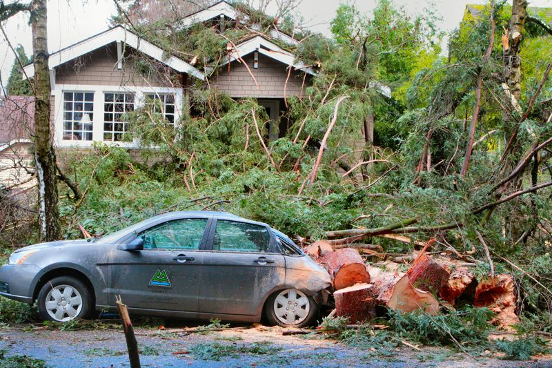 by: DAVID F. ASHTON - With an earth-shaking crash, a tree falls during the windstorm, crushing a car and damaging a house.