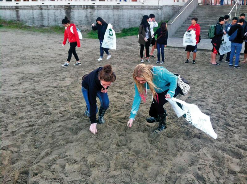 by: PHOTO COURTESY OF SOLVE  - Clackamas High School students search for tiny bits of plastic at the fall 2013 Seaside Beach cleanup.
