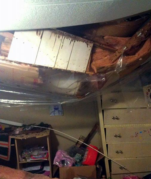 by: CONTRIBUTED PHOTO - The tree landed on Eric Bodreaus daughter Jaimees bedroom, about 4 feet from her bed.